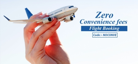 Guideline for  International Commercial Flight Operation