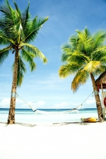 Goa Holiday Package ( 3 Night )