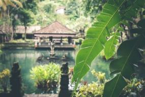 Discover Bali 4 Nights