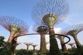 Singapore Saver with Sentosa