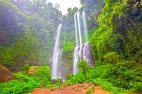 Tropical Bali