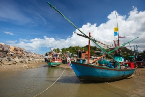 Thrilling Andaman
