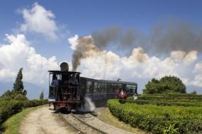 Pleasant Darjeeling
