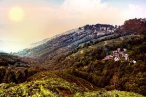Captivating Darjeeling