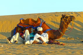 Captivating Jaisalmer