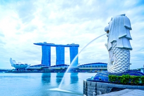 Delight Singapore Holiday Package.