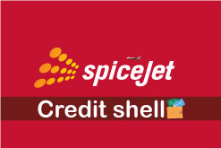 Redeem your Spice jet credit shell.