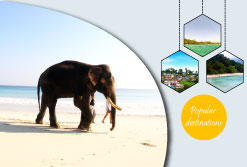 10% off Andaman sightseeing and activities